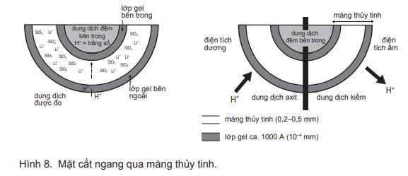 Máy đo pH là gì? Ứng dụng của Bút đo pH là gì?